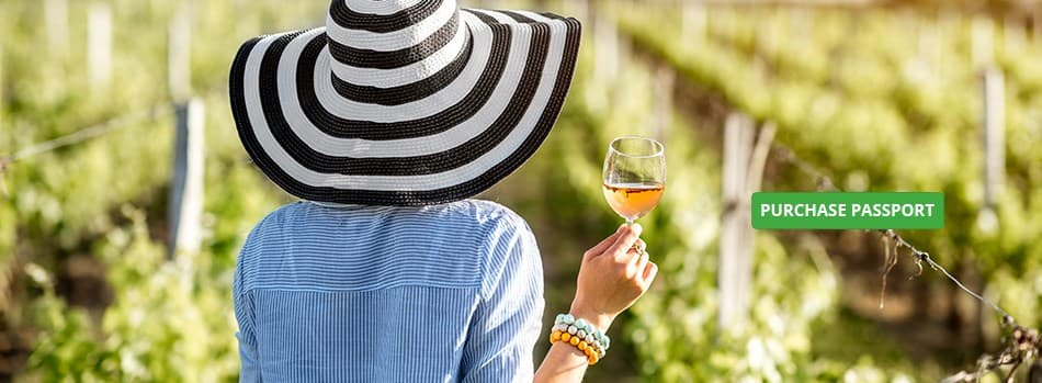 Sip  Swirl Your Way Through Napa Valley Image