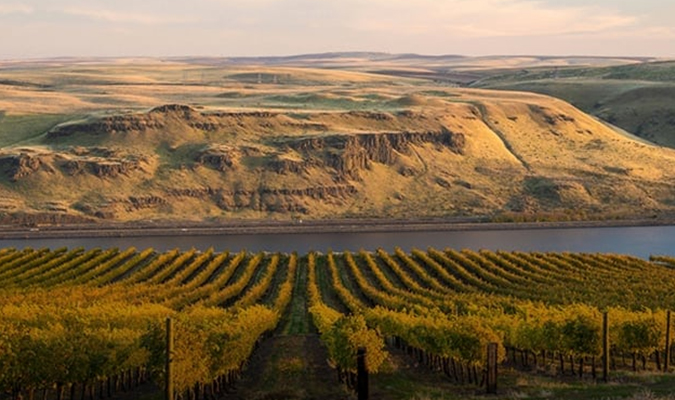 Discover the Majestic Snake River Valley Wine Region