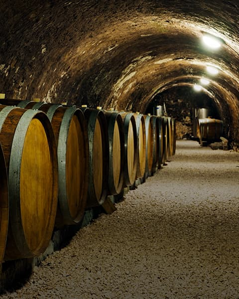Best Napa Valley Cave Tours Image