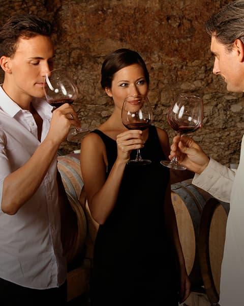 Wine Tasting 101 in Sonoma Image