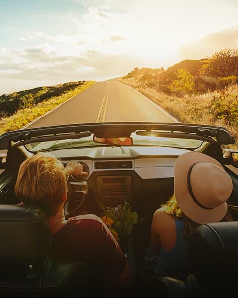 Worth the Drive- Sonoma Gems Image