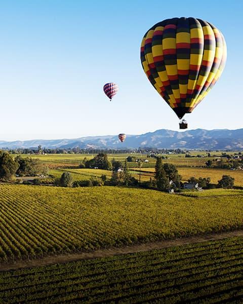 Napa Valley Region Image