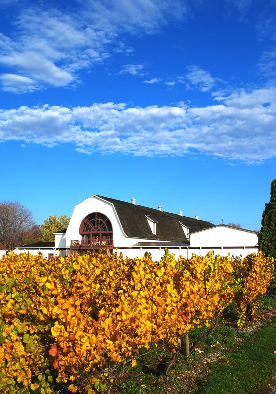 A gallery image (1277) of Millbrook Vineyards and Winery from CellarPass