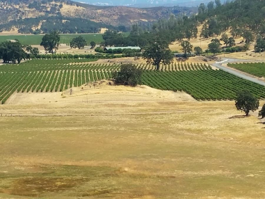 A gallery image of Langtry Estate & Vineyards from CellarPass