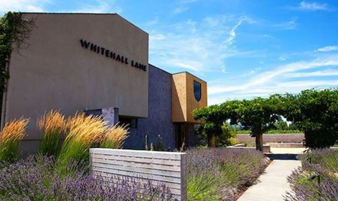 A gallery image (897) of Whitehall Lane Winery from CellarPass