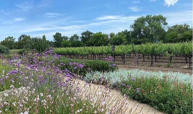 A gallery image of GROTH VINEYARDS & WINERY from CellarPass