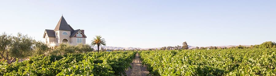 A gallery image (10008) of Concannon Vineyard from CellarPass