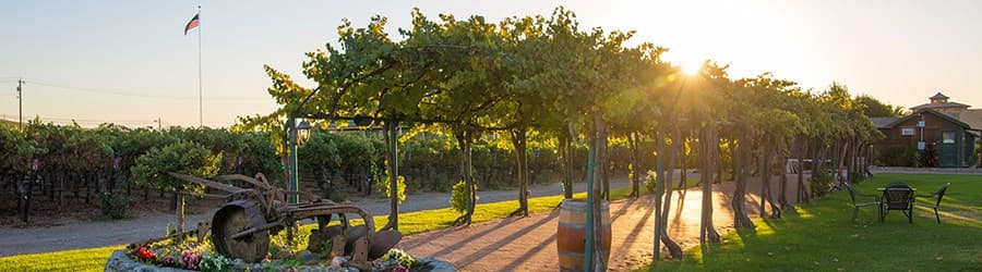 A gallery image (10012) of Concannon Vineyard from CellarPass