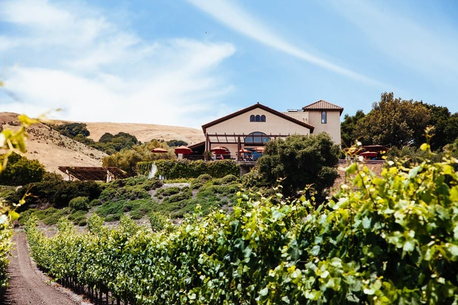 A gallery image of Gloria Ferrer Caves & Vineyards from CellarPass