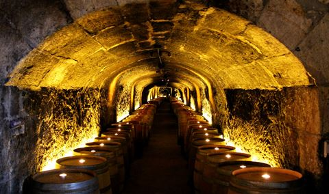 Del Dotto Winery  Caves