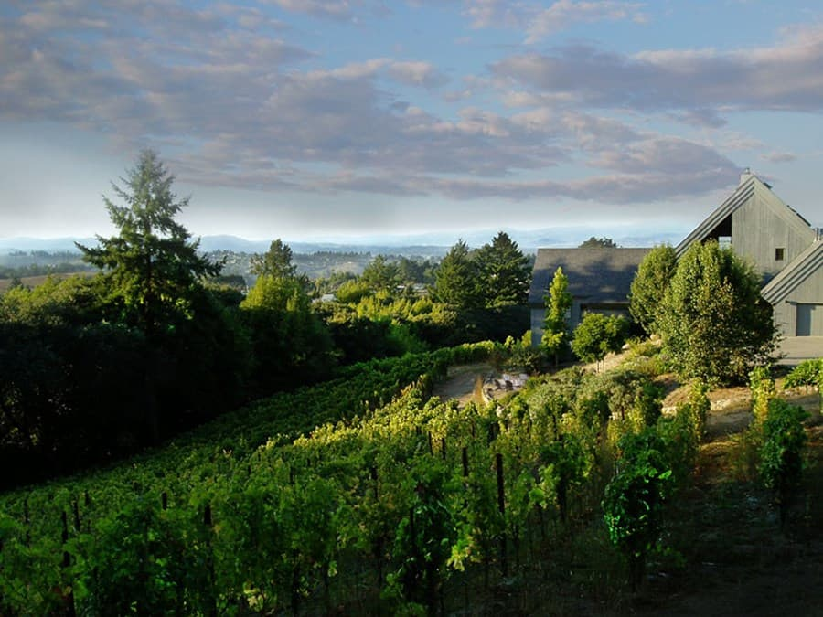 A gallery image of Halleck Vineyard from CellarPass
