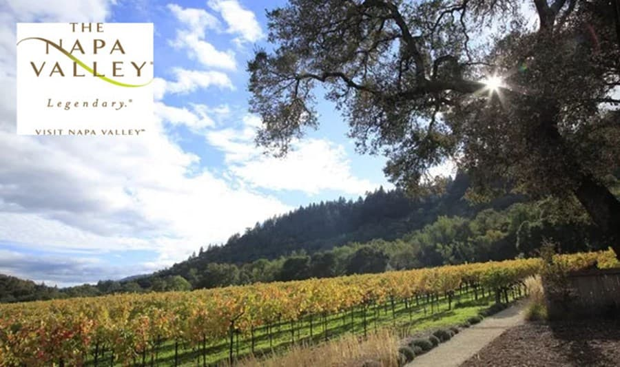 A gallery image (6024) of Visit Napa Valley from CellarPass