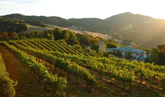 Mt Veeder Appellation Council