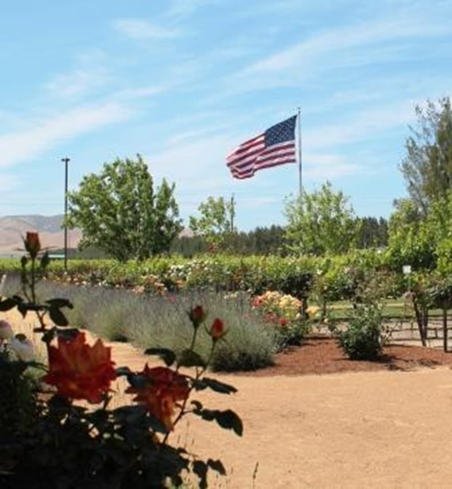 A gallery image (7787) of Scheid Vineyards Estate Winery & Tasting Room from CellarPass