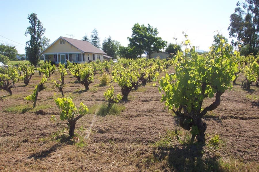 A gallery image (1470) of Inspiration Vineyards from CellarPass