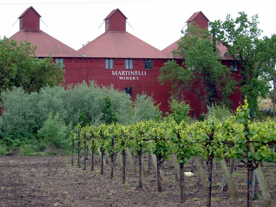 A gallery image (7918) of Martinelli Winery from CellarPass