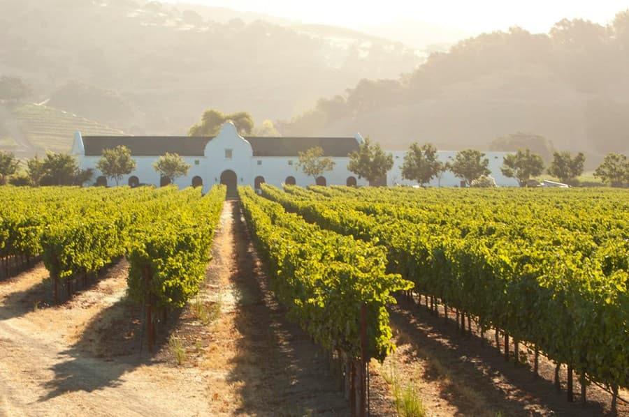 A gallery image of Chimney Rock Winery from CellarPass