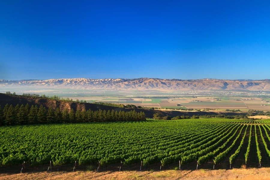 A gallery image (6015) of Hahn Family Wines from CellarPass