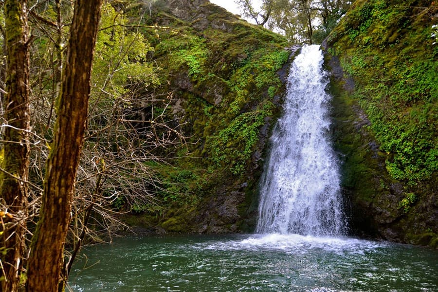 A gallery image of Collier Falls from CellarPass