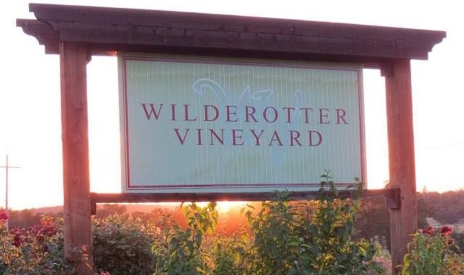 Wilderotter Vineyard