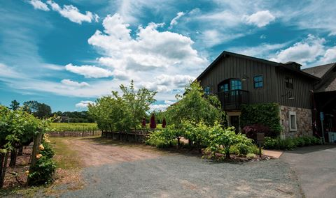Salvestrin Winery
