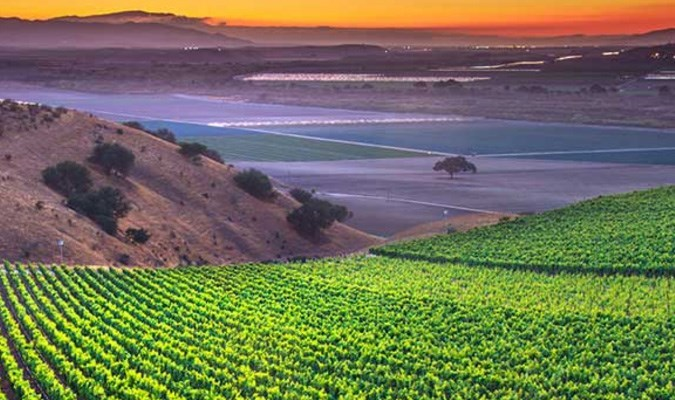 Monterey Wine Country