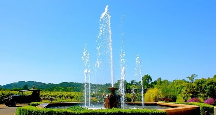 A gallery image of White Oak Vineyards & Winery from CellarPass