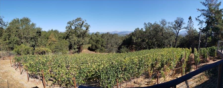 A gallery image of Wren Hop Vineyards from CellarPass