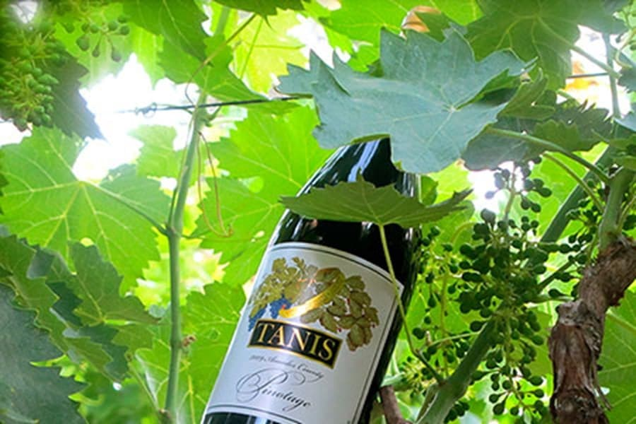 A gallery image (19644) of Tanis Vineyards from CellarPass