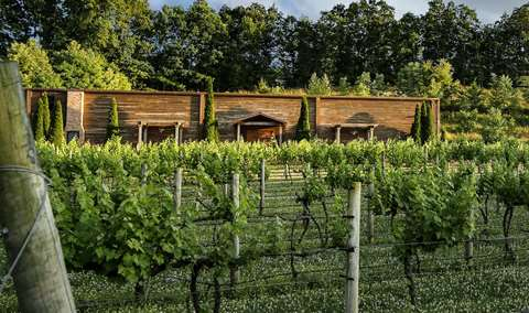 Natchez Hills Winery and Vineyard