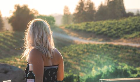 Mediterranean Vineyards