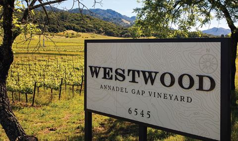 Westwood Estate Wine - Sonoma