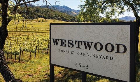 Westwood Estate Wine - Brasswood