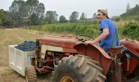 Smokey Ridge Farmstand  Winery