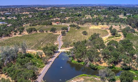 Twin Rocks Estate Vineyard