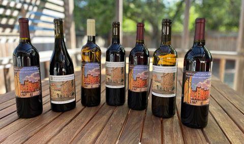 Mancini di Lucca Winery @ Feast It Forward