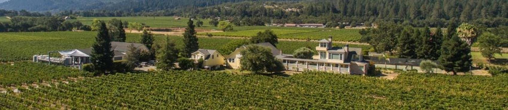 Benessere Vineyards