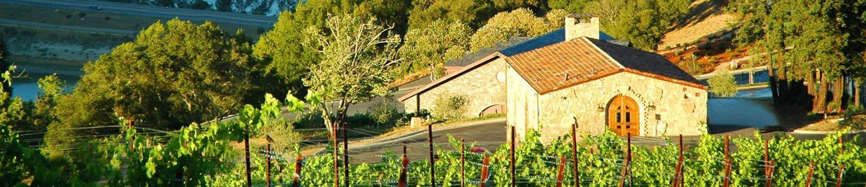 Black Ridge Vineyards