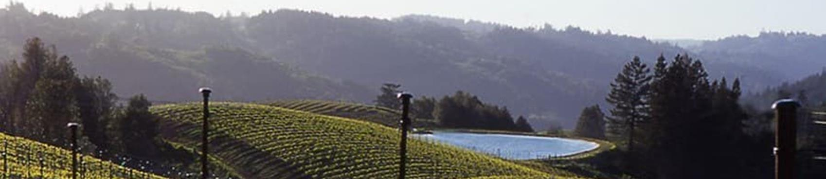 A image of Fort Ross Vineyard Tasting Room