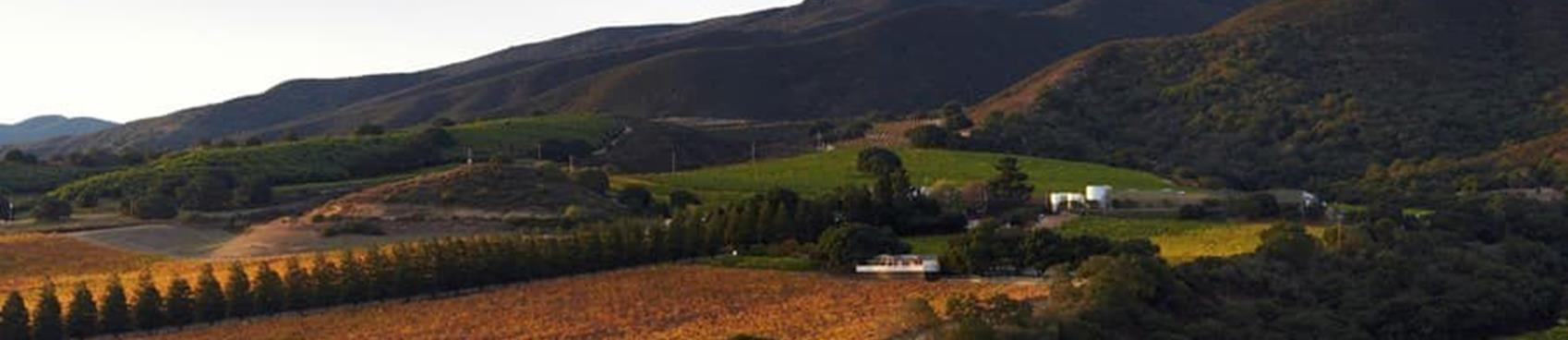A image of Hahn Family Wines