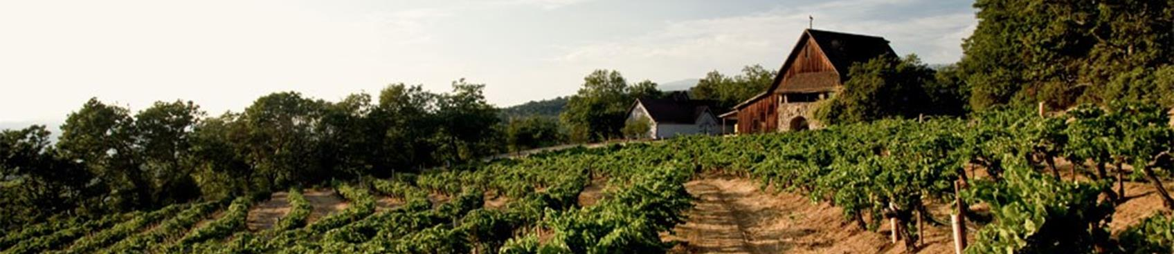 A image of Hanzell Vineyards