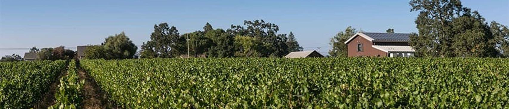 A image of Inman Family Wines