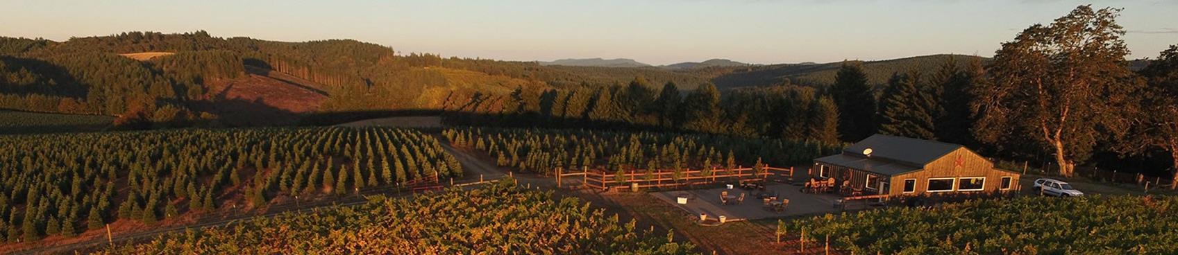 A image of J Wrigley Vineyards