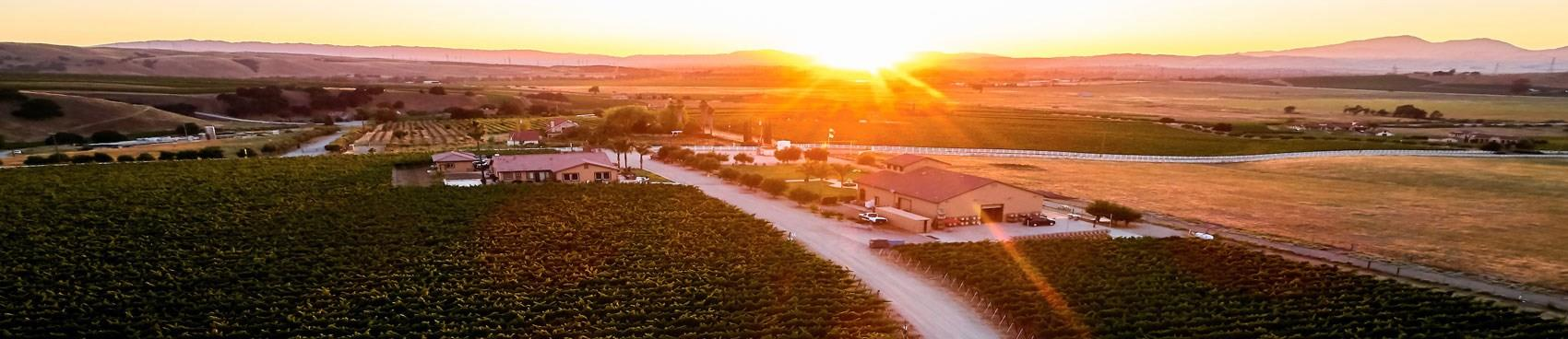 A image of McGrail Vineyards and Winery
