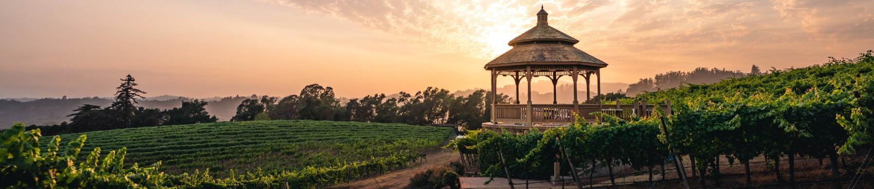 Regan Vineyards Winery
