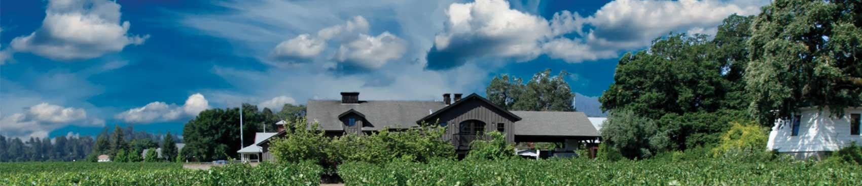 A image of Salvestrin Winery