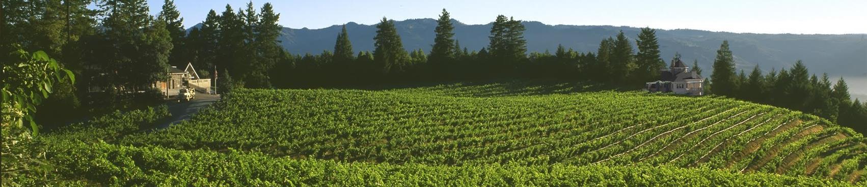 Schweiger Vineyards and Winery