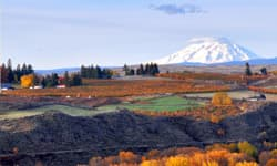 Yakima Valley Region Image