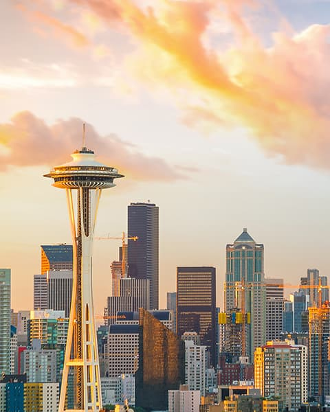 Seattle Metroimage