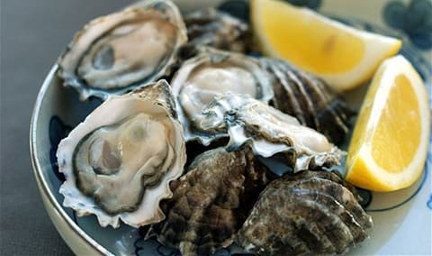 Oysters & Wine